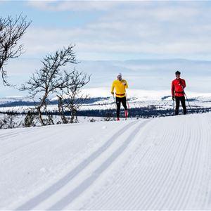 Pilgimsloppet-lofsdalen