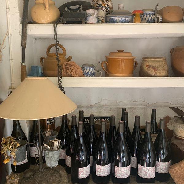 Repas et dégustation de vins en Pic St Loup avec Bertrand Bosc