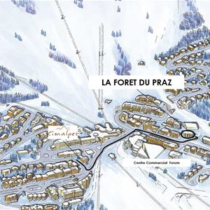 4 rooms 6 people ski-in ski-out / FORET DU PRAZ 8 (mountain of dream)