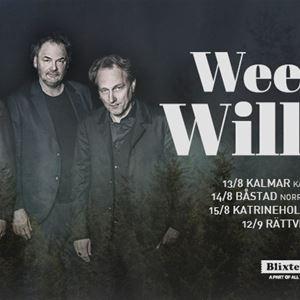 Weeping Willows - Kalmar Stadspark