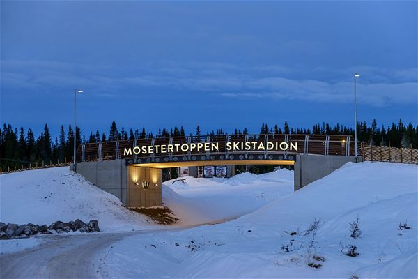 Mosetertoppen Lodge