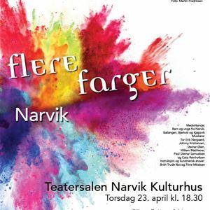 © Narvik Kulturhus, More Colors