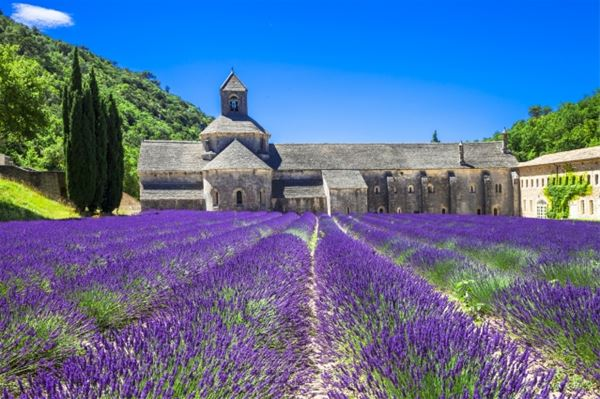 Excursion Fontaine de Vaucluse -Roussillon - Gordes - Abbaye de Sénanque -Châteauneuf du Pape - Ouvlong Travel