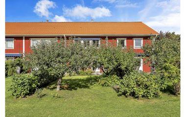 Uppsala - Undertbart Radhus med gångavstånd till Ultuna-arenan - 8002
