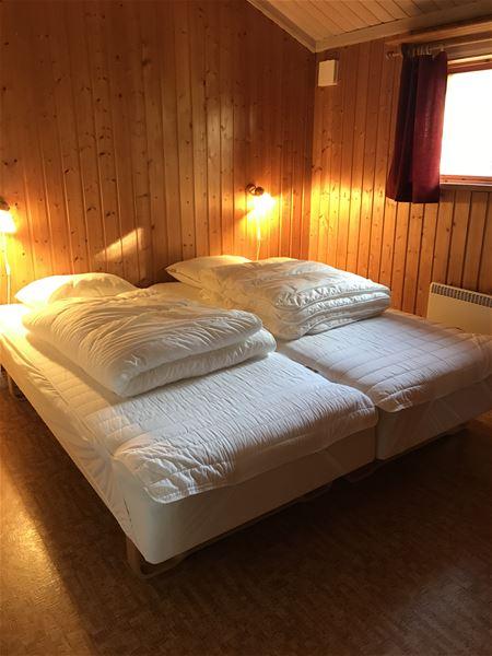 Dubbelsäng i ett rum med tak och väggar av furu.