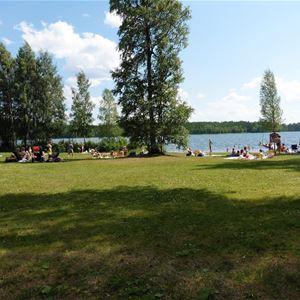 Badplats med grön gräsmassa nära sjön.