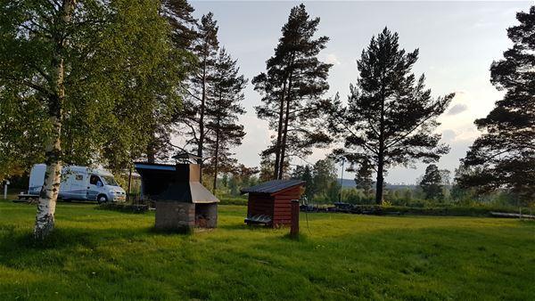 Husbil och träd på campingen.
