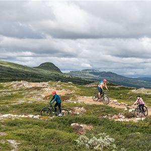 Emrik Jansson, Barnfamilj cyklar på leden Fjällblå