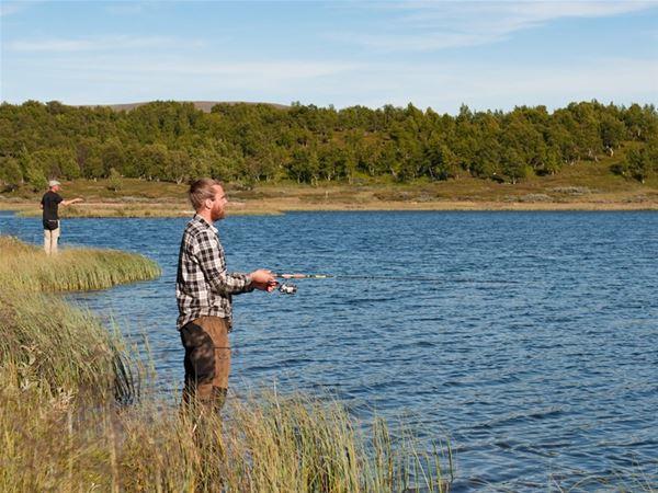Fjällfiske med guide Tänndalen