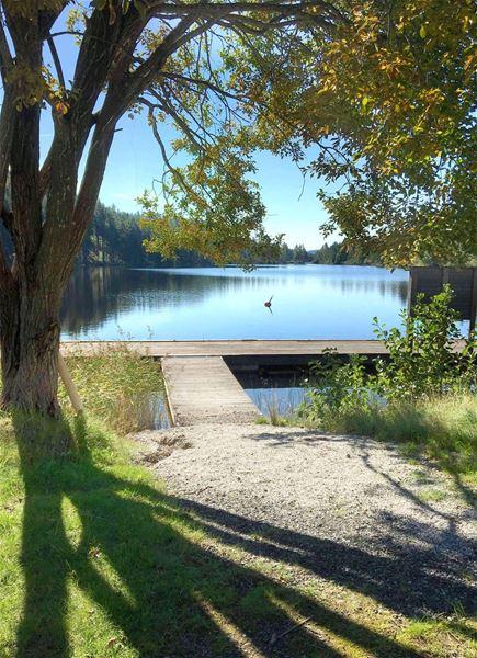 Sjön Barken med badbrygga.
