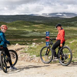 Emrik Jansson, Barn cyklar på fjället