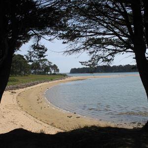 La Petite Presqu'île - Gîte adapté PMR