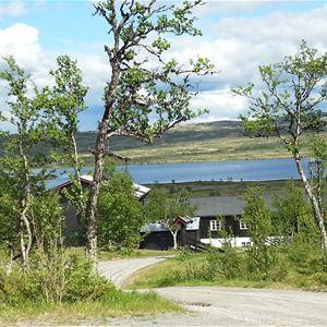 Torsetlia Fjellstue og Hyttegrend
