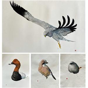 Galleri Tinnert Arontorp - Utställning Karl Mårtens Akvarell • Grafik