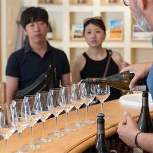 Châteauneuf du Pape wine tour - A la Française ! Provence
