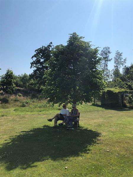 STF Andrarum/Kuskahusen Vandrarhem