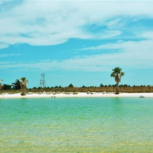 Camping**** avec Lagon - Narbonne