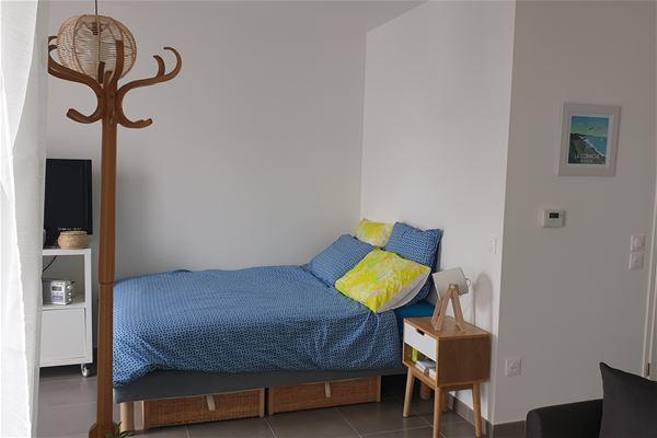 Studio flat Les Dryades - ANG2339