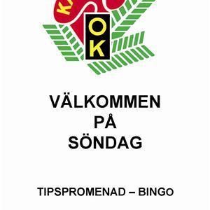 Tips- och bingopromenad med Kalmar OK