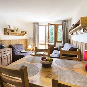 2 room with cabin from 4 to 6 people ski-in ski-out / RESIDENCE GRAND BOIS SKIMANIA (Mountain)