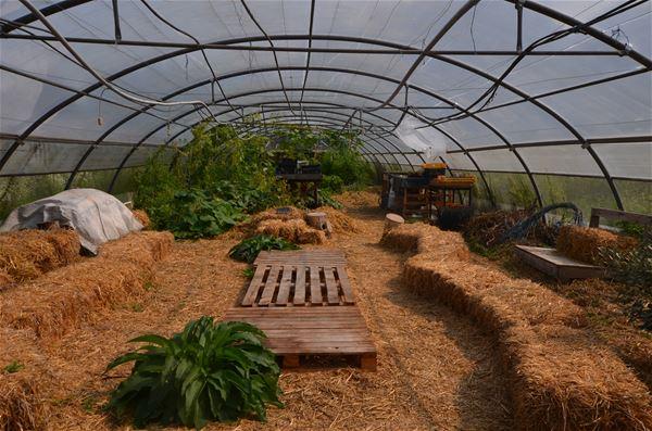 De jardin en jardin en passant par la route des moulins (atelier cueillette et cuisine, dégustation et balade guidée)