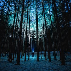 Kusligt spännande nattäventyr på Remsleberget