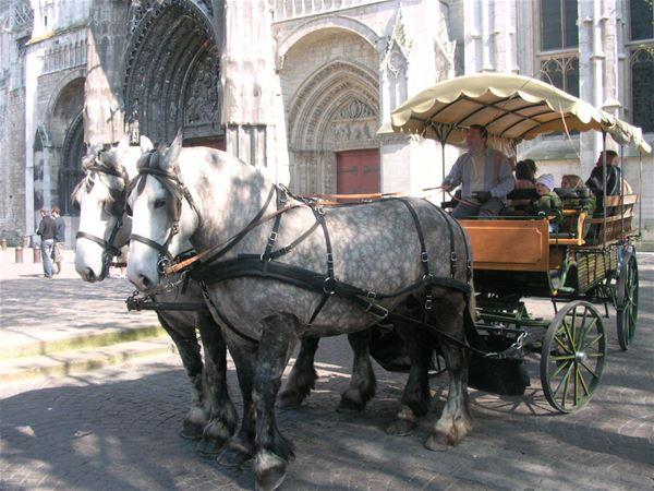 Balade en fiacre avec Emma et Léon (visite littéraire Flaubert) NOUVEAU