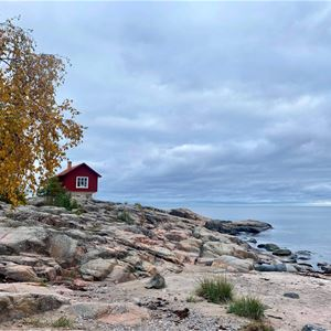 Yogavandring med guldkant - skog, hav & SPA med övernattning