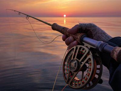 Sportfiske Gotland • Scandic Visby