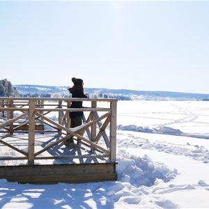 Tjej står på brygga och blickar ut över en frusen sjö.