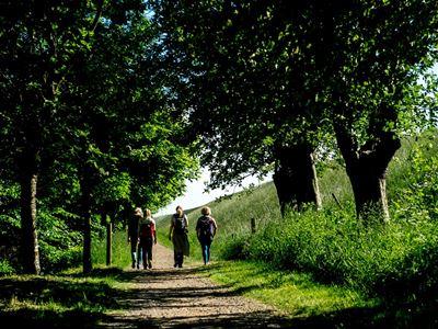 Mini-break on the Marsh Trail