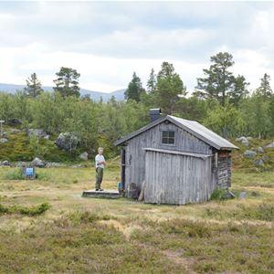 Särsjöstugorna, Långfjället