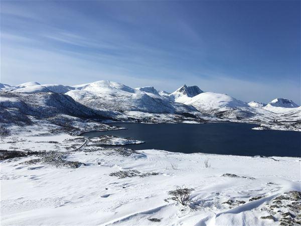 © Fjordbotn Camping, Utsikt over Fjordbotn