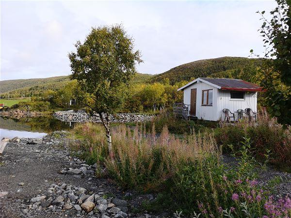 © Fjordbotn Camping, Alf-bua i naturlige omgivelser