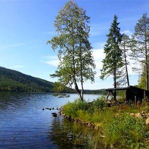 Slogbod intill sjön.