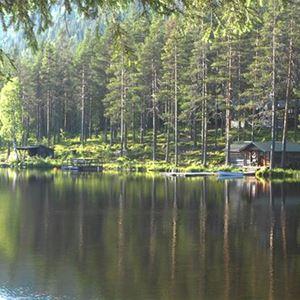 Solig sommardag vid sjön i Navardalen.
