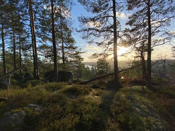 STF Västervik Hotell Park