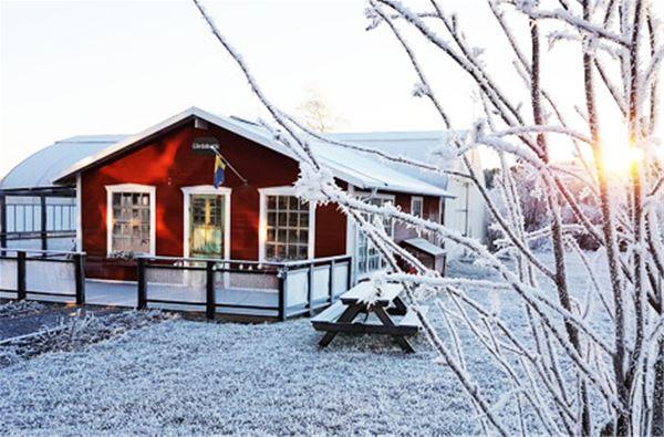Julbasar i Orangeriet