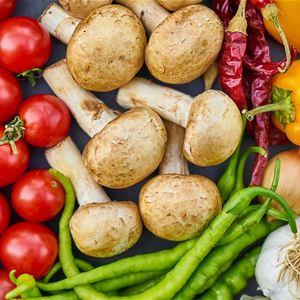 Föreläsning Kost och hälsa och visning av Idrottens historia