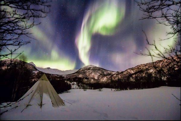 © Skrolsvik Kystferie, Lavvo og nordlys