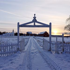 © Senja Moments, The gate to Tranøya in winter
