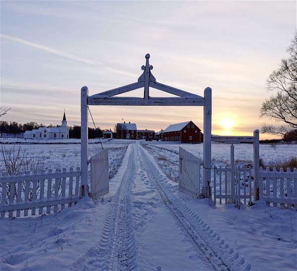 © Senja Moments, The gate to Tranøya in winter