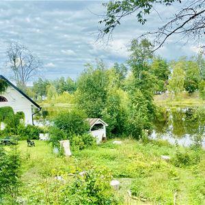 Vitt hus i grönskande trädgård sommartid.