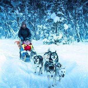 © Finnsnes Hotell, Dog sledding
