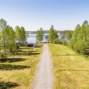 Väg som leder till sjön med omgivande grönska.