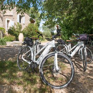 Escapade En Terres de Garrigues-Pic Saint Loup avec Les Cycles du Terroir