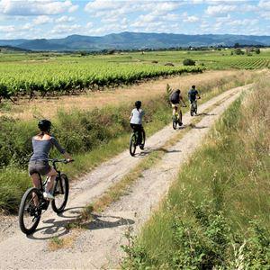 VALLÉE DE L'HÉRAULT » GETAWAY WITH « LES CYCLES DU TERROIR