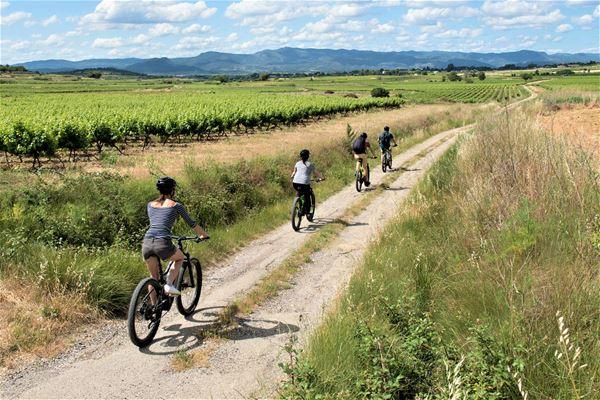 Escapade Sur Les Terrasses du Larzac avec les Cycles du Terroir