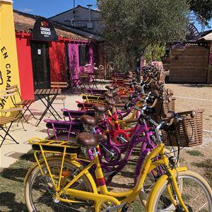 Safari en vélo électrique avec Camargue Autrement