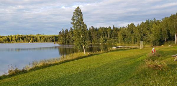 Utsikt över äng och sjö.